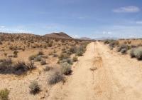 UltimateGraveyard Mojave Mountains & Dirt Road Panorama